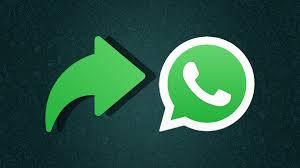 Cegah Hoaks Corona, Pesan WhatsApp Hanya Forward Sekali