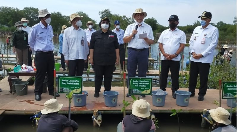 Bupati Tangerang Dampingi 4 Menteri RI Tanam Mangrove