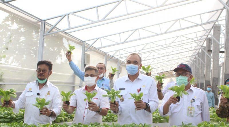 Bupati Zaki dan Menteri Pertanian Kunjungi PT TUM